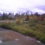 秋の栂池自然園の様子